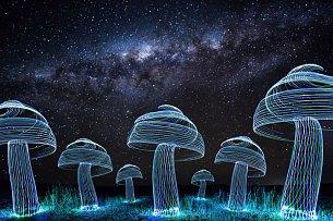 Někdo vytvořil houby pomocí světla pod mléčnou drahou