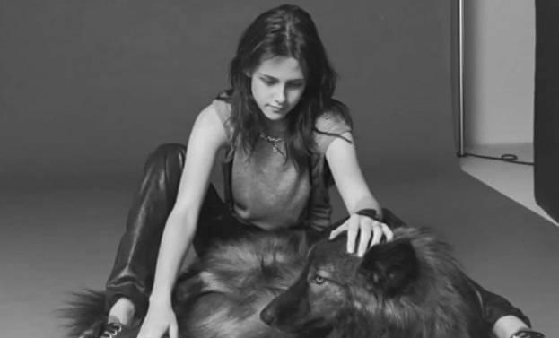 Kristen Steward překvapila tím, že má křížence psa a vlka