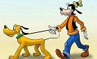 Goofy a Pluto jsou oba psi. Proč jeden pes vlastní druhého? Není to tak trochu rasistické?