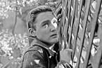 První role se Dennis dočkal vefilmu Rebel bez příčiny (1955).