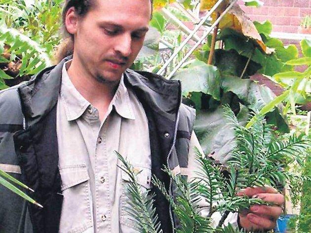 Unikátní rostlinu mají v Botanické zahradě v Táboře.