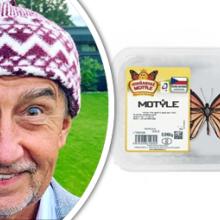 Andrej Babiš a jeho slavný výrok motýle