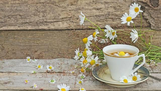 Obzvlášť teď na podzim se sušené bylinky hodí při nejrůznějších nachlazeních.