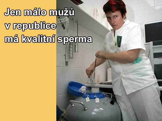 Spermie se ukládají do spermobanky, kde je asi -196 °C.