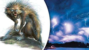 Za bouřky prý pobíhají po japonské divočině tvorové, kterým je lepší se vyhnout.
