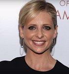 Pro Sarah Michelle Gellar byla role Buffy zásadní zlom v kariéře. Ačkoli už předtím hrála ve filmech a můžete ji znát třeba z Velmi nebezpečných známostí, Vřískotu či Scooby-Doo, právě role Buffy byla ta, která jí otevřela dveře.
