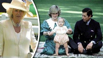 Camilla se bojí, že se rozvodové bitvy nakonec možná ani nedožije.