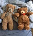 Maminka koupila před třiceti lety dva medvídky, jednoho dala svému synovi a druhého schovala pro své vnouče.