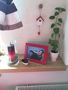 Míša miluje společné fotky, tak je má po celém bytě.