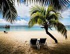 Na Roatán vyrážejí turisté především pro jeho malebné pláže a bezchybnou koupačku.