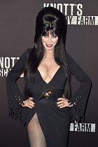 Cassandra Petersonová se objevila ve společnosti coby své alter ego Elvira.