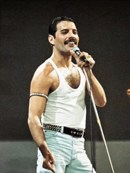 Ohomosexualitě idůvodu úmrtí Freddieho Mercuryho se ví široko daleko