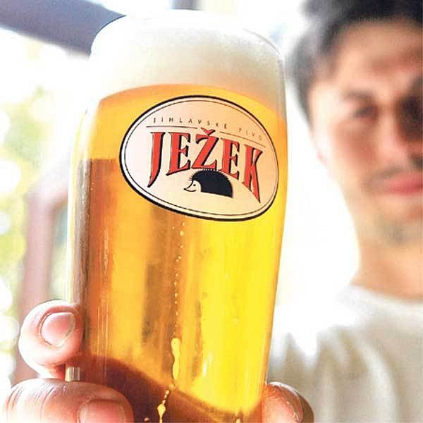 Pivo Ježek
