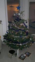 Stromeček u zpěvačky doma, pod kterým jistě našla výjimečné dary.