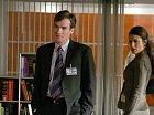 James Wilson, věčný parťák Dr. House v podání Roberta Seana Leonarda