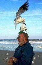 Na kapsáře člověk vidí upozornění skoro všude. Ale někdo by měl také varovat před ptačí kriminalitou!
