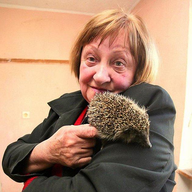 Nazdar, šmudlo, říkám ježkům nejčastěji. A oni na mě tak krásně koukají, svěřila se nám paní Dvorská.