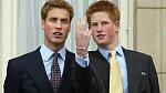 Harry se několikrát nechal slyšet, že svého bratra nadevše miluje, ale že se jejich životní cesty zkrátka rozešly.