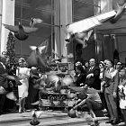 Alfred Hitchcock také během festivalu vypustil hejno ptáků