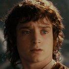 Frodo Pytlík je hobit z Kraje, který se shodou okolností dostane k Prstenu moci, který se zaváže odnést do Mordoru a zničit ho tam. Vlastně sám moc neví do čeho jde. Je to přemýšlivý mladý hobit, kterého láká dobrodružství a dostane se mu ho možná až moc.