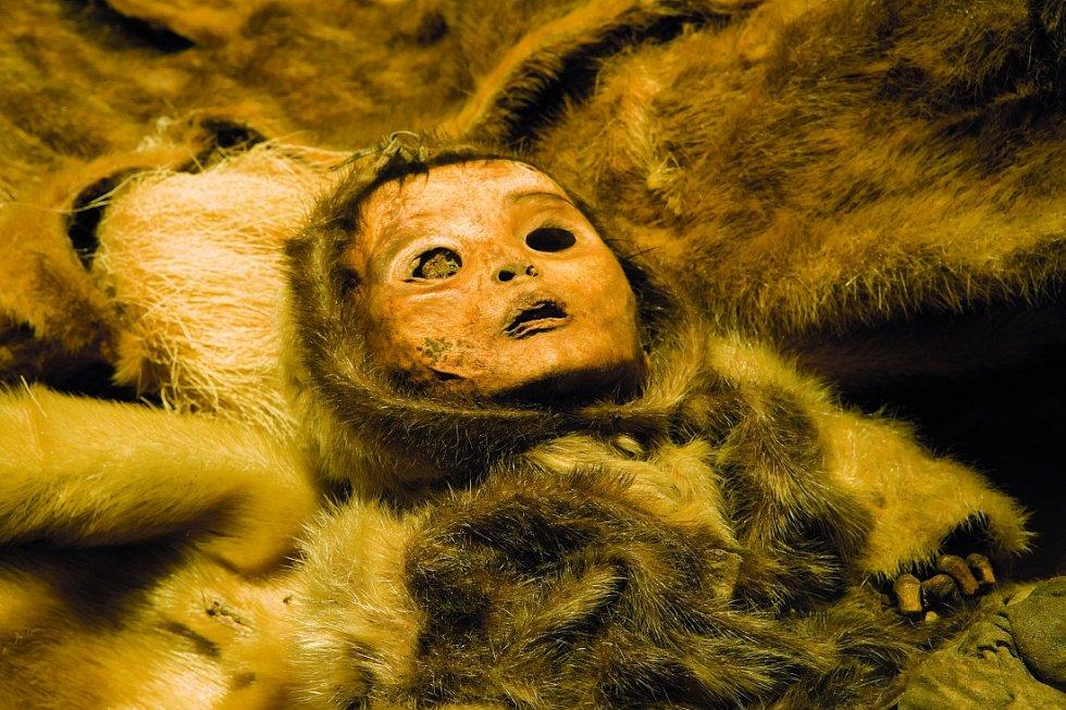 Symbolem nálezu se staly ostatky malého chlapce.
