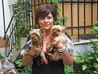 Ilona Csáková s milovanými jorkšíry