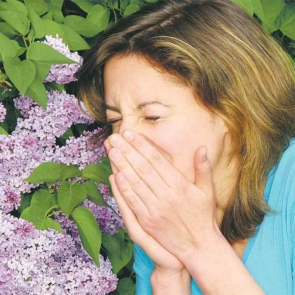 Každého třetího občana ČR trápí každý rok pylové alergie.