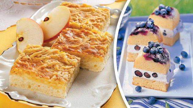 Kynutá jablečná buchta a piškotová s brusinkami