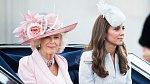 Ty dvě se zkrátka nemusejí. Řevnivost mezi Camillou a Kate Middleton je obrovská.