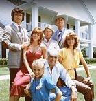 Seriál se točí okolo rodiny Ewingů, kteří vlastní rafinérii Ewing Oil. Hlavou rodiny je Jock Ewing, který má tři syny a také jednoho nemanželského. Kromě nich je v seriálu kupa dalších lidí a každý něco řeší.