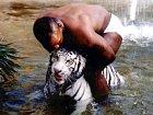 Mike Tyson s tygrem