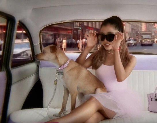 Ariana Grande je naprosto psí člověk, kromě tohohle psíka má čtyři další chlupáče