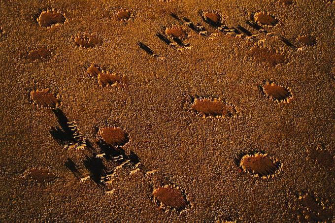Holinami posetá poušť Namib vAfrice. Mohou za to skřítci, nebo termiti?