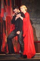 Noid v muzikálu Hamlet s Leonou Machálkovou.