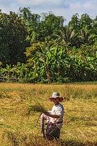 Khmerové jsou velmi přátelští a usměvaví lidé.