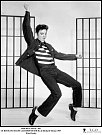 22 let: Díky filmu Vězeňský rock (1957) si upevnil pozici hvězdy.