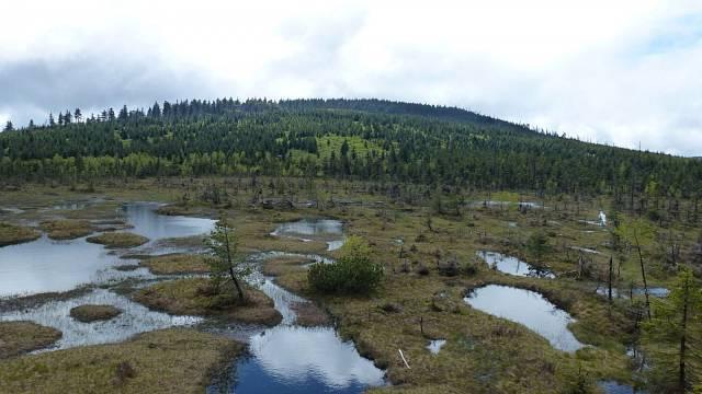 Rašeliniště Na Čihadlech