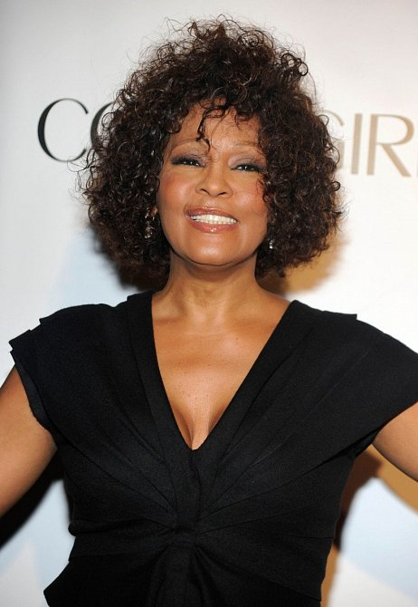 Whitney Houston, 2010