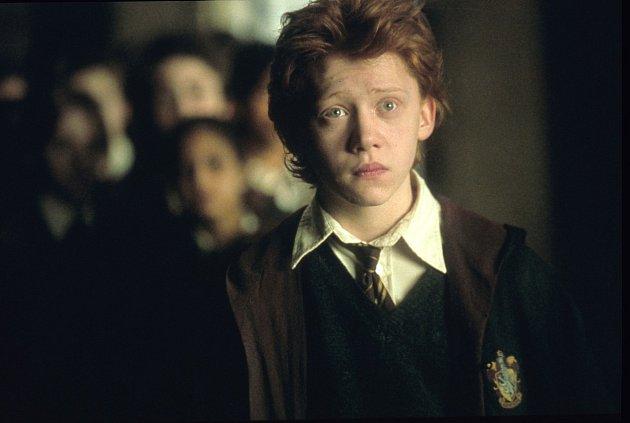 Harry Potter herci a jejich partneři
