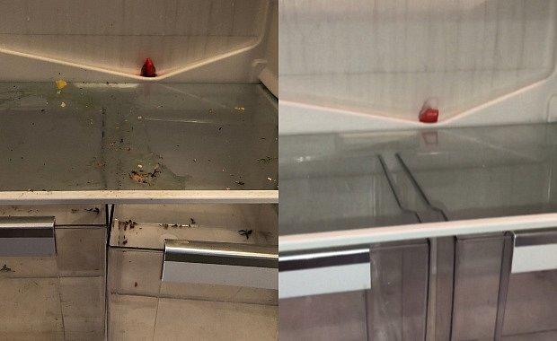 Takhle může vypadat i vaše lednice