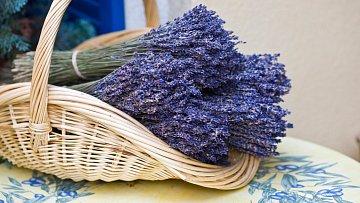 Levandule nejen krásně voní, ale má i řadu dalších využití.