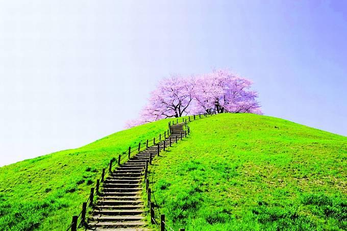 Vršky kofun jsou oblíbeným výletním místem.