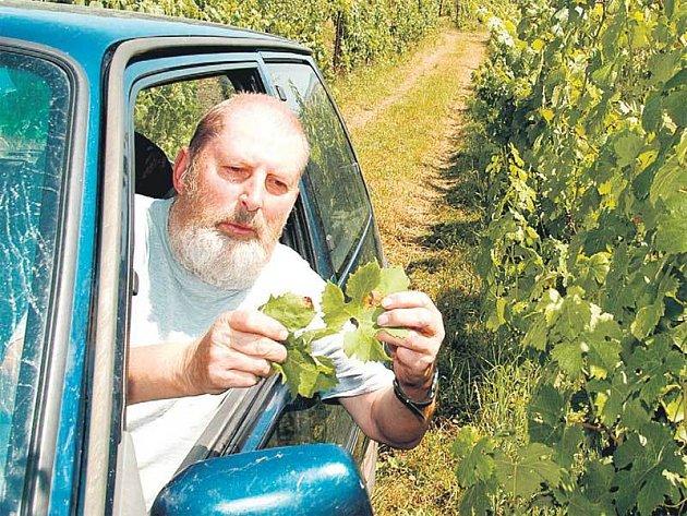 Miroslav Liederhaus kontroluje vinnou révu z automobilu.