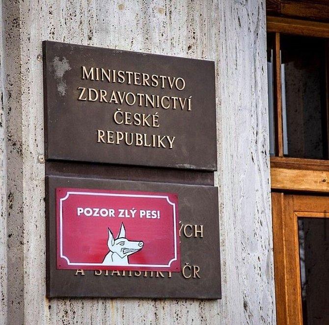 V ČR hlídá pandemii pes.