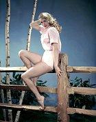 30 let: Sošnou plavovlásku považovali zanástupkyni Marilyn Monroe.