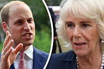 Vévodkyně nechápe, jak mohl William říct něco, co jí tolik ublíží...