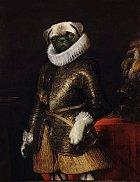 Aristokratická zvířata
