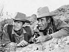 Vewesternu Šerifská hvězda (1957) se potkal sHenrym Fondou.