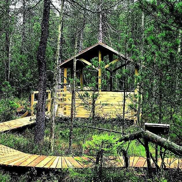 Kdo nenavštívil, neuvěří! Český les je opravdovou oázou klidu.