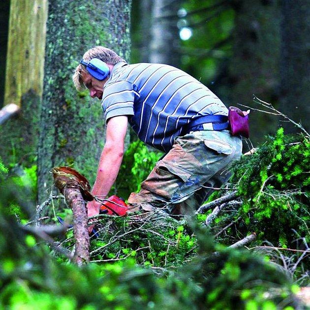 Když se kácí les, létají třísky